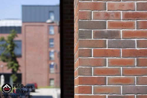 Клинкерная плитка Feldhaus Klinker vascu ardor carbo R752DF14 240x52x14 мм