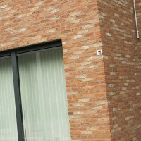Плитка ручной формовки Nelissen BELLE EPOQUE DE MARCHE 215x20x65 мм