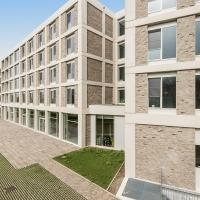 Клинкерная плитка Vandersanden 501. Hagen WS